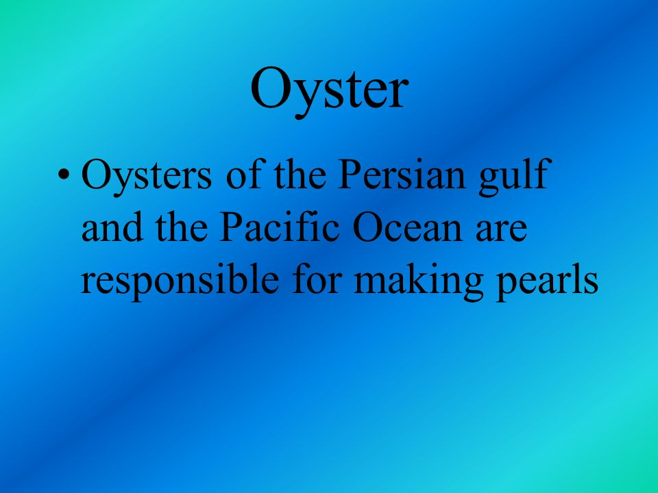 Oyster Oysters of the Persian gulf and the Pacific Ocean are responsible for making pearls