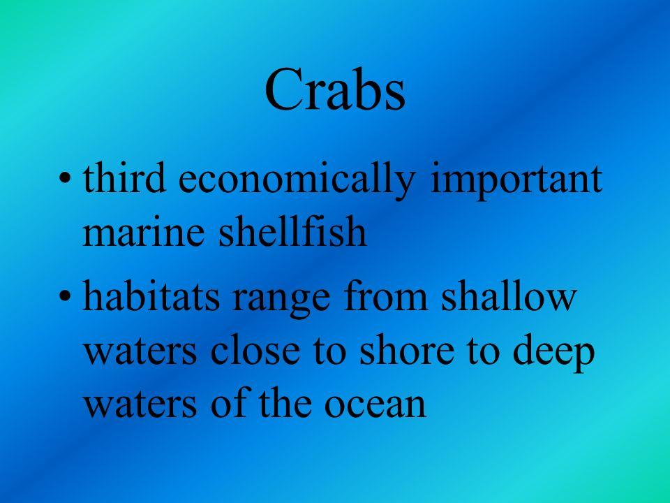 Crabs third economically important marine shellfish