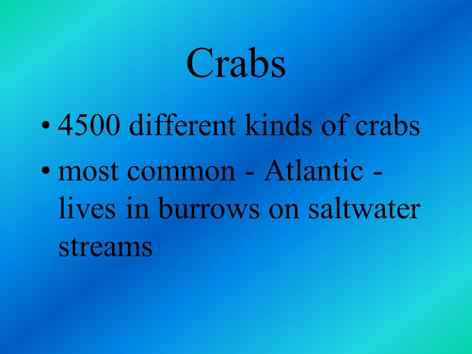 Crabs 4500 different kinds of crabs