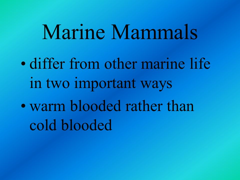 Marine Mammals differ from other marine life in two important ways