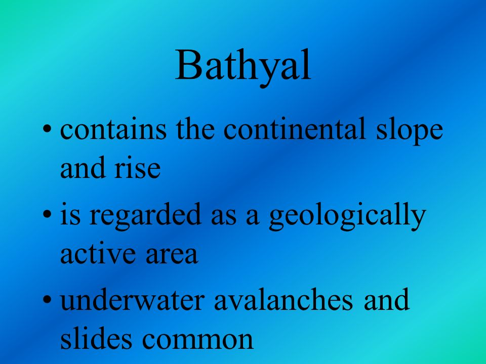 Bathyal contains the continental slope and rise