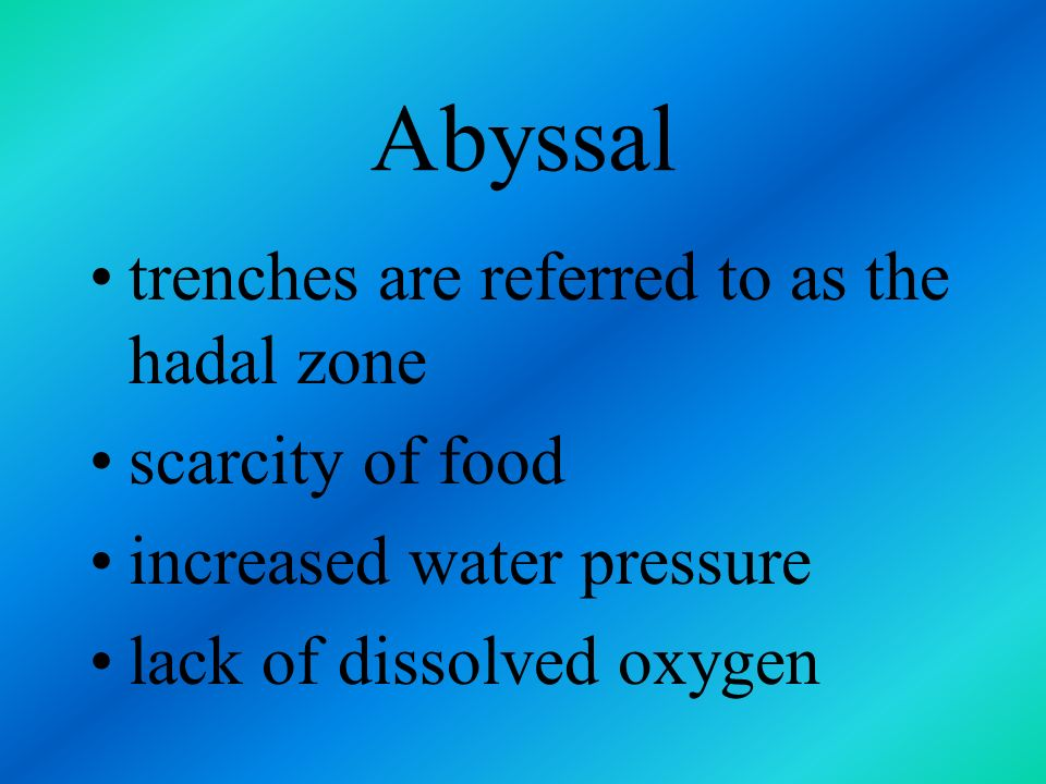Abyssal trenches are referred to as the hadal zone scarcity of food