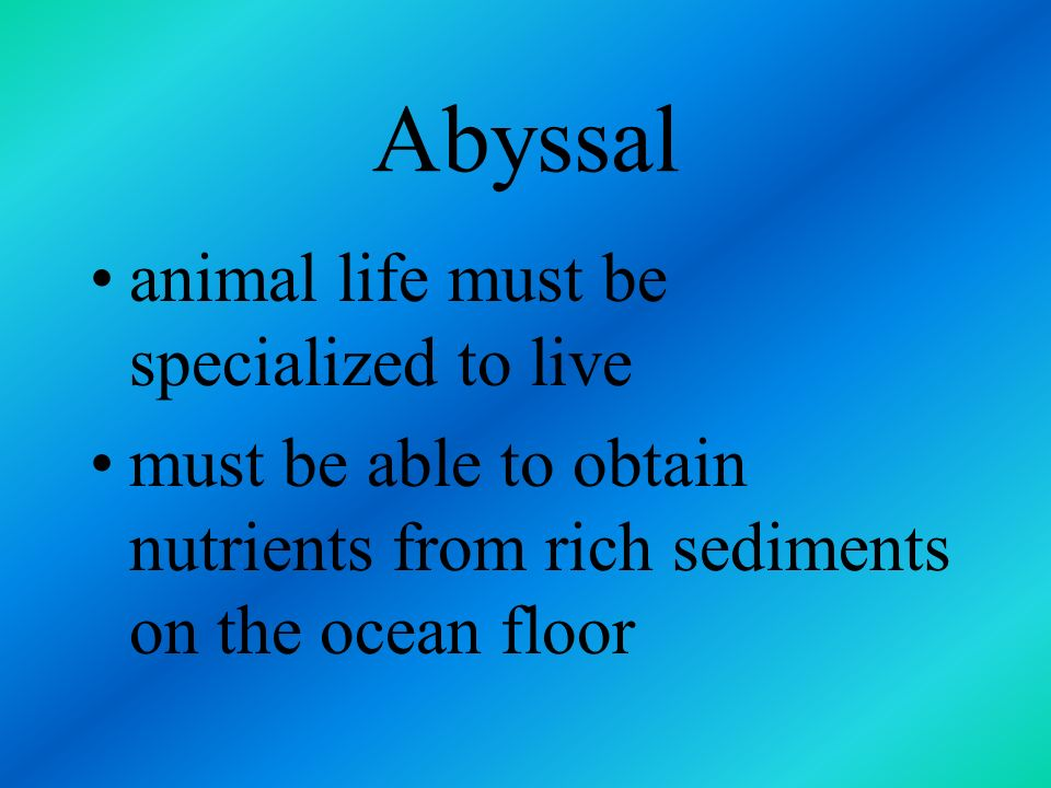 Abyssal animal life must be specialized to live