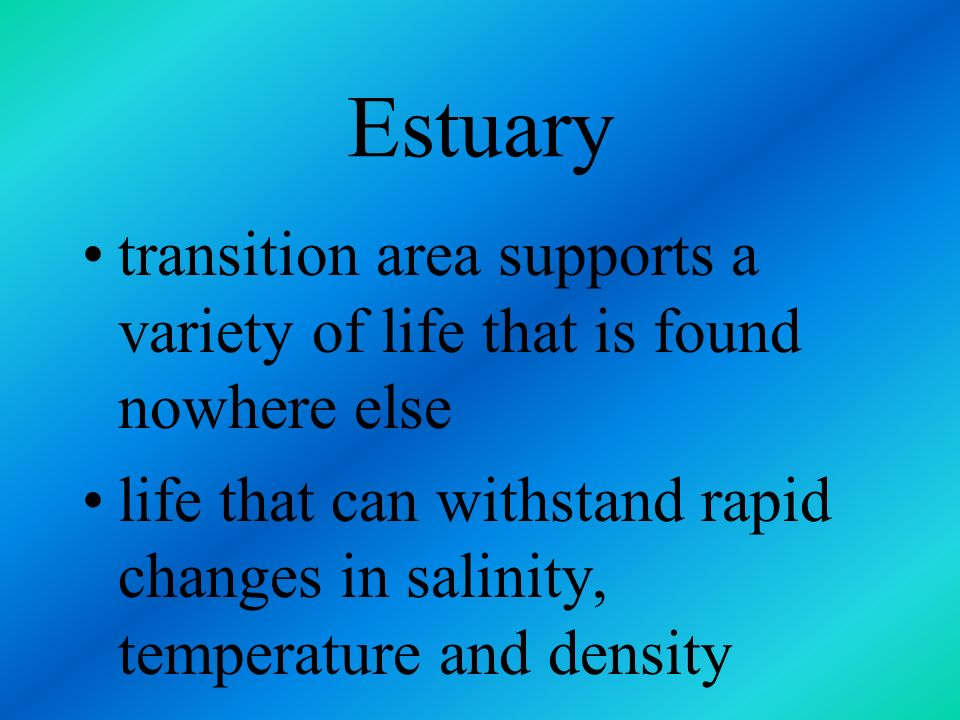 Estuary transition area supports a variety of life that is found nowhere else.