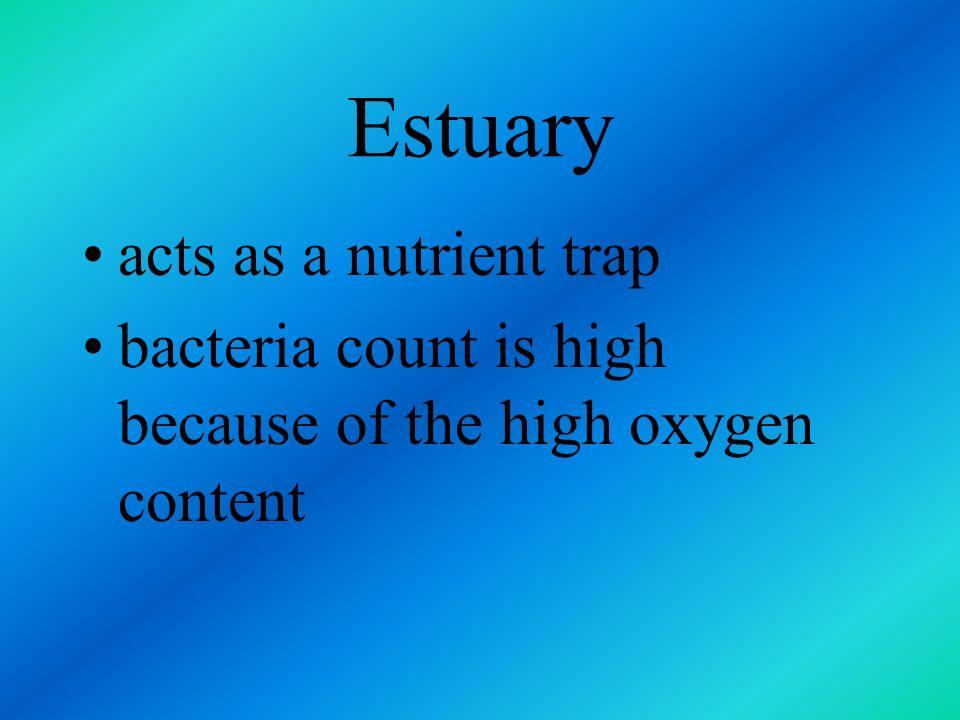 Estuary acts as a nutrient trap