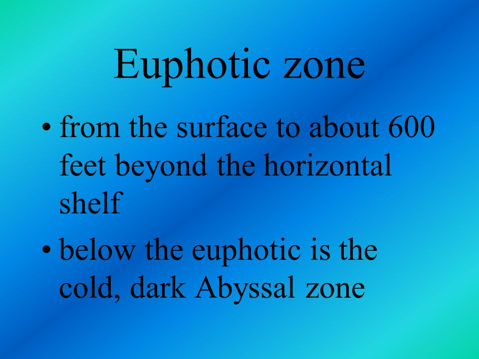 Euphotic zone from the surface to about 600 feet beyond the horizontal shelf.