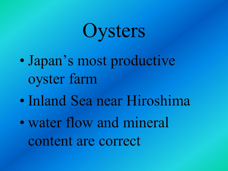 Oysters Japan's most productive oyster farm Inland Sea near Hiroshima