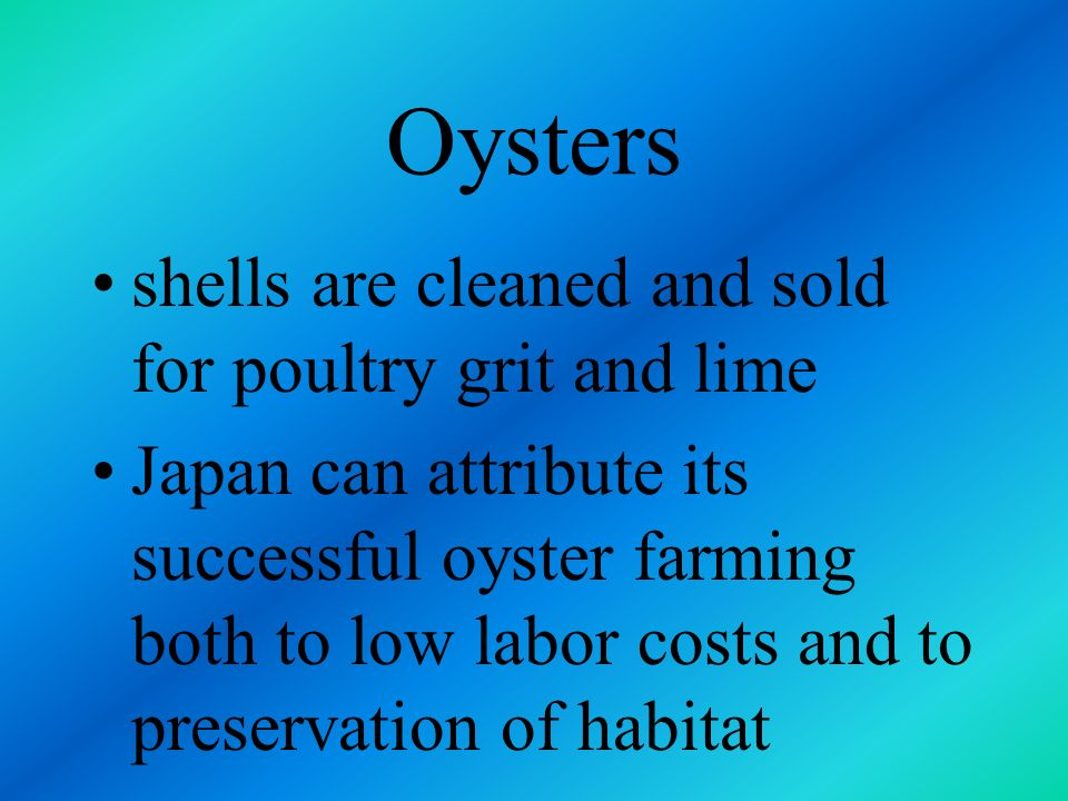 Oysters shells are cleaned and sold for poultry grit and lime
