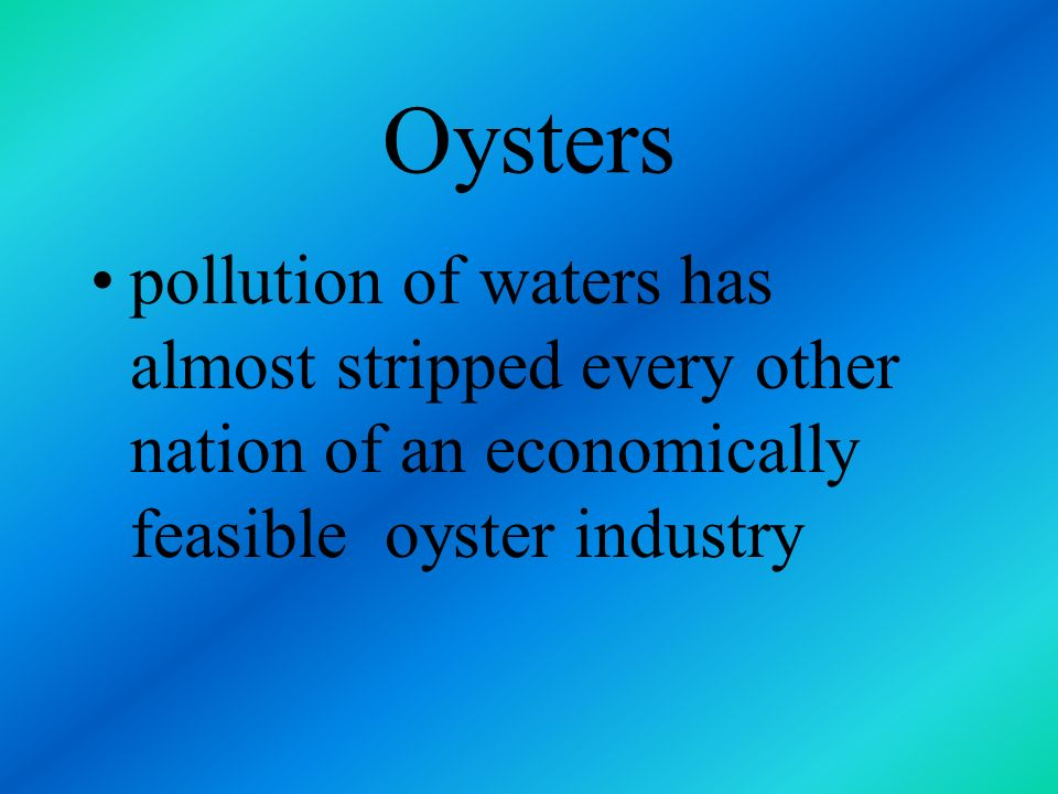 Oysters pollution of waters has almost stripped every other nation of an economically feasible oyster industry.