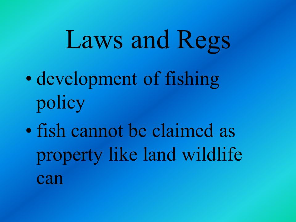 Laws and Regs development of fishing policy