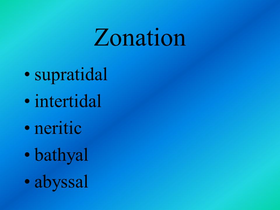 Zonation supratidal intertidal neritic bathyal abyssal