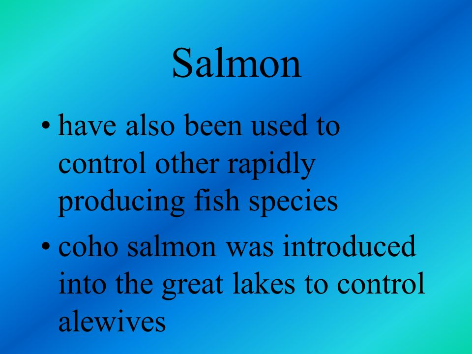 Salmon have also been used to control other rapidly producing fish species.