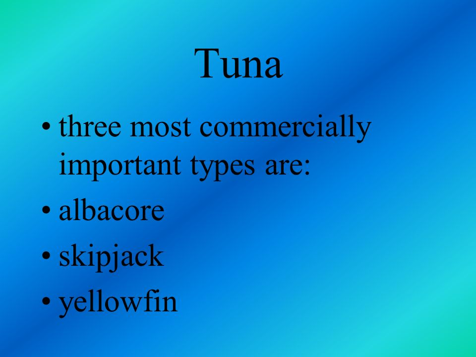 Tuna three most commercially important types are: albacore skipjack