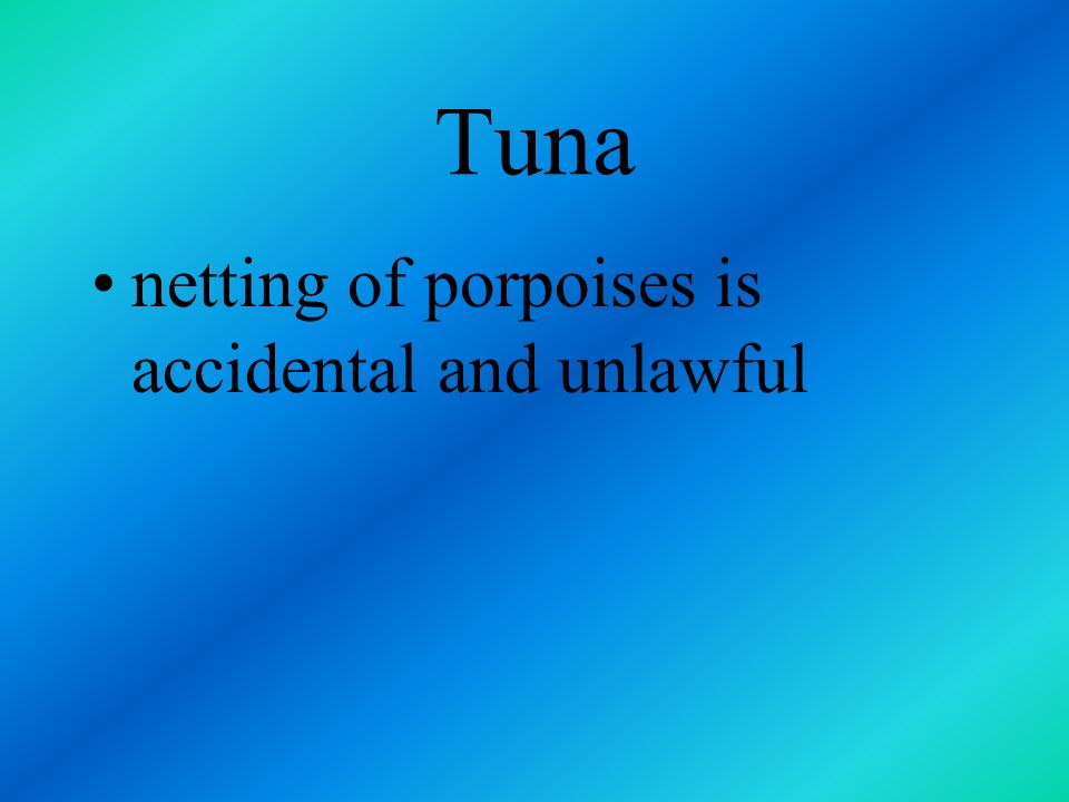 Tuna netting of porpoises is accidental and unlawful