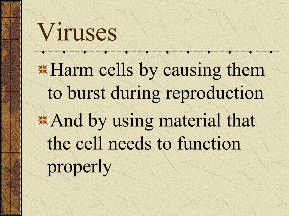 Viruses Harm cells by causing them to burst during reproduction