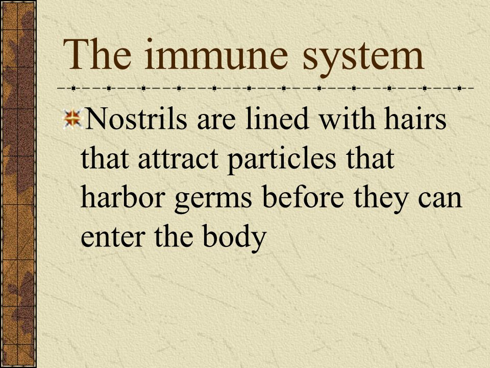 The immune system Nostrils are lined with hairs that attract particles that harbor germs before they can enter the body.