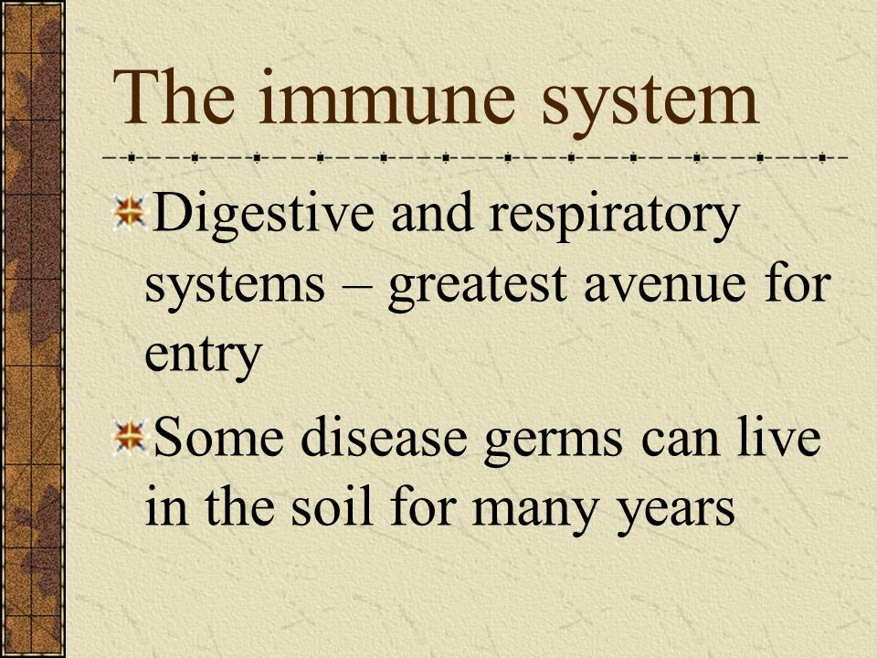 The immune system Digestive and respiratory systems – greatest avenue for entry.