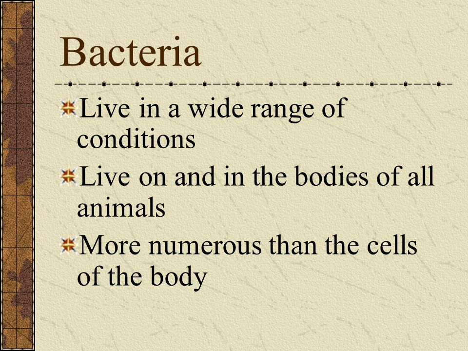 Bacteria Live in a wide range of conditions