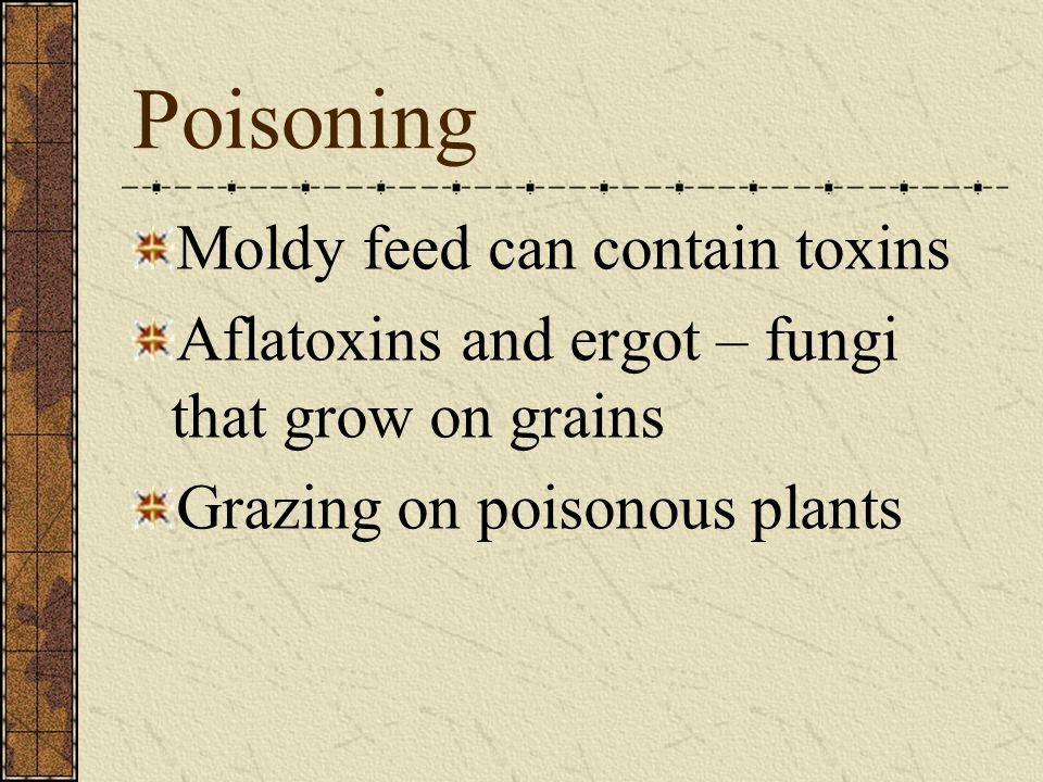Poisoning Moldy feed can contain toxins