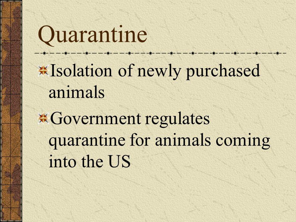 Quarantine Isolation of newly purchased animals