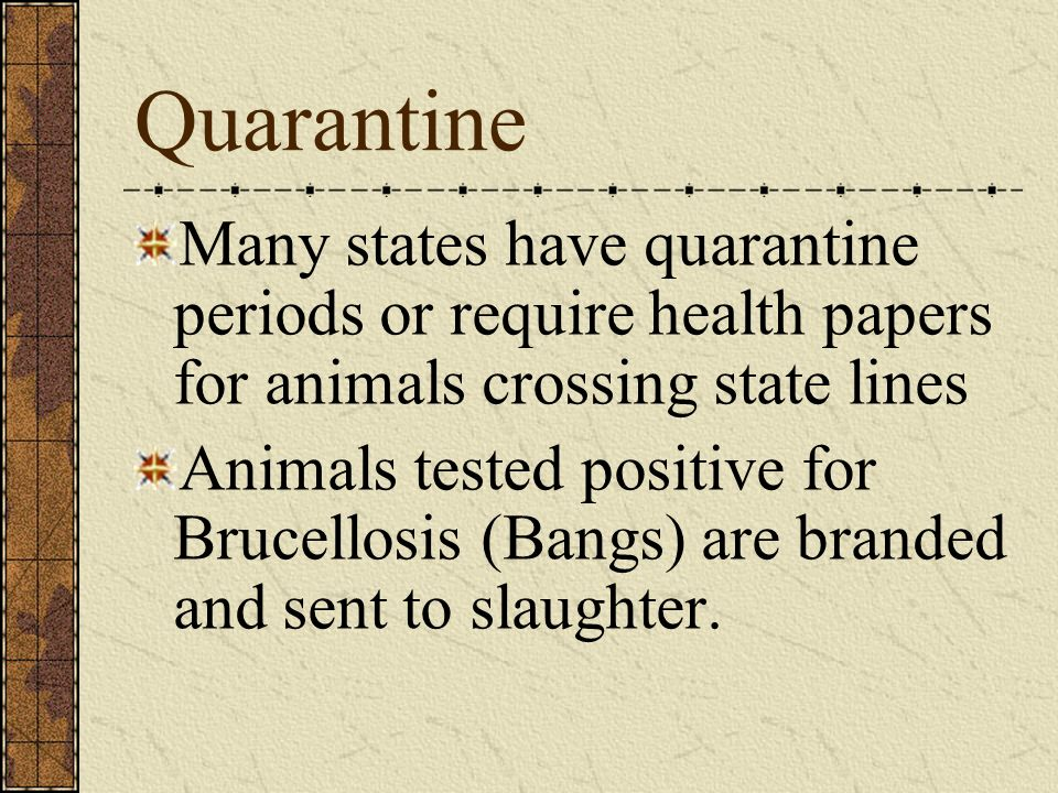 Quarantine Many states have quarantine periods or require health papers for animals crossing state lines.