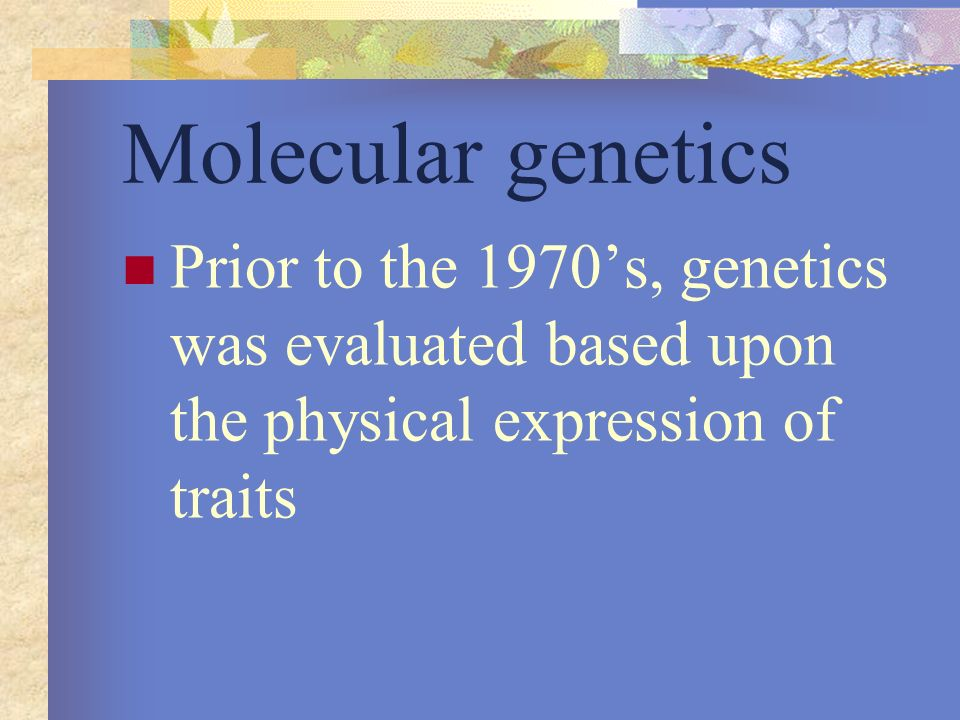 Molecular genetics Prior to the 1970's, genetics was evaluated based upon the physical expression of traits.