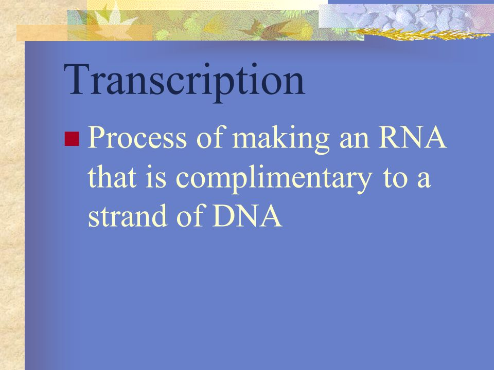 Transcription Process of making an RNA that is complimentary to a strand of DNA
