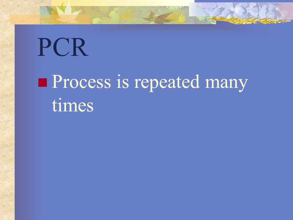 PCR Process is repeated many times