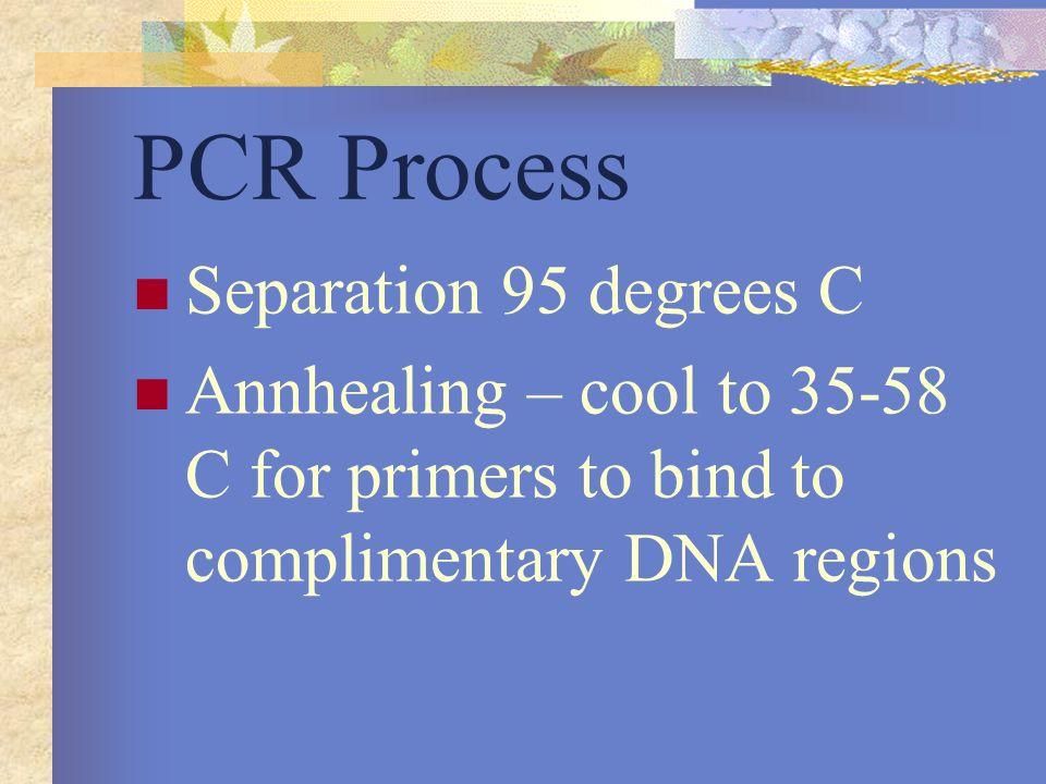 PCR Process Separation 95 degrees C
