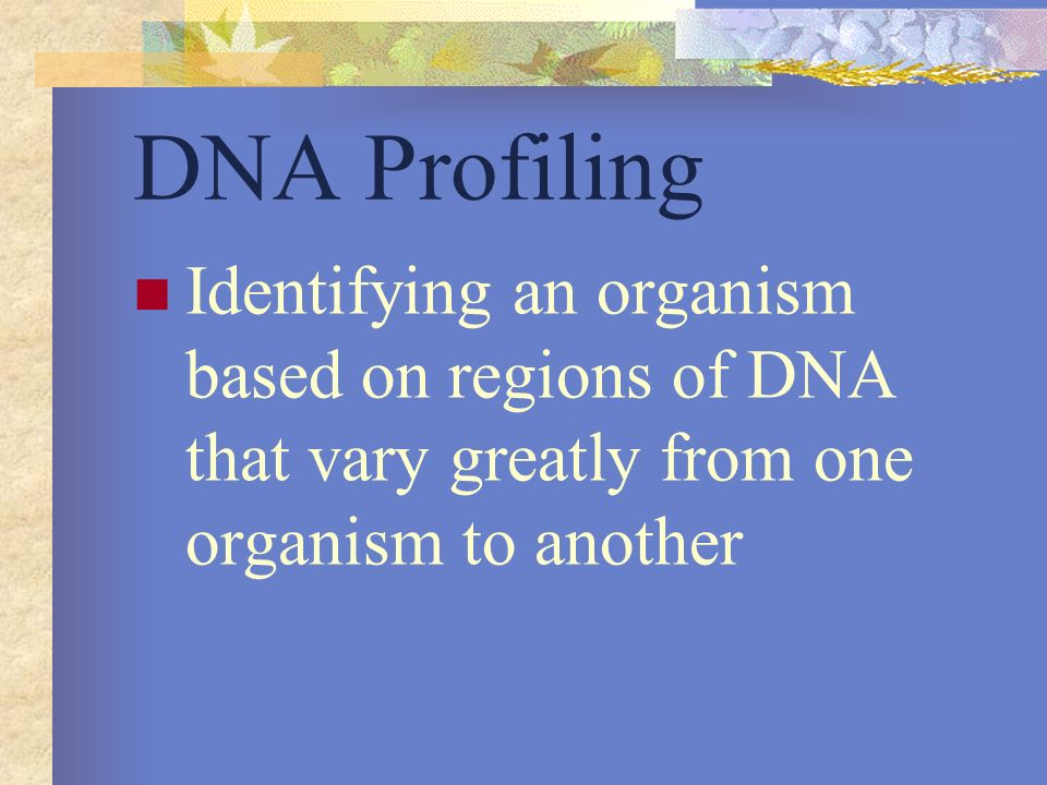 DNA Profiling Identifying an organism based on regions of DNA that vary greatly from one organism to another.