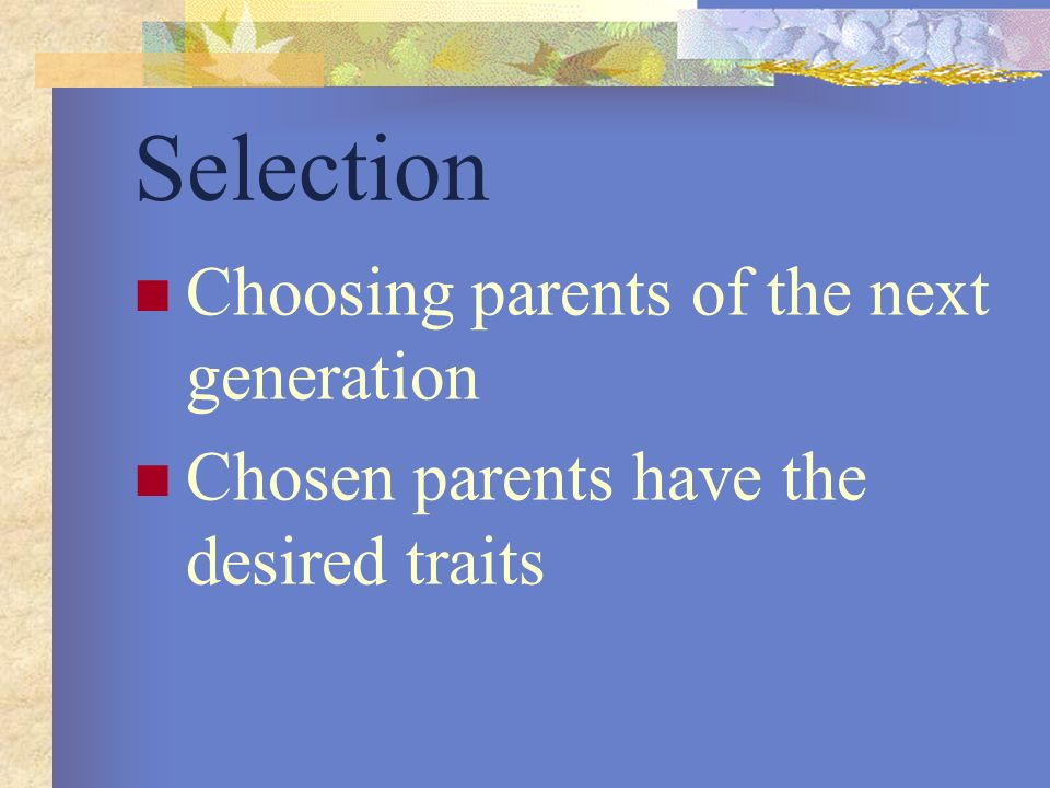 Selection Choosing parents of the next generation