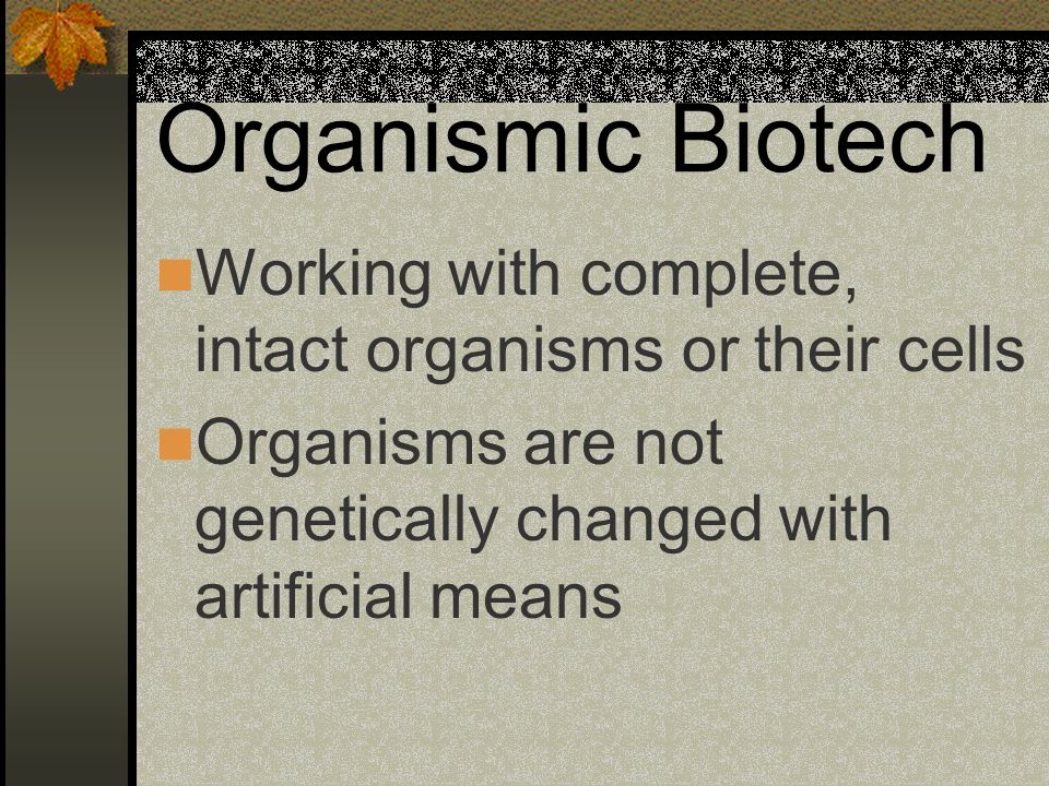 Organismic Biotech Working with complete, intact organisms or their cells.