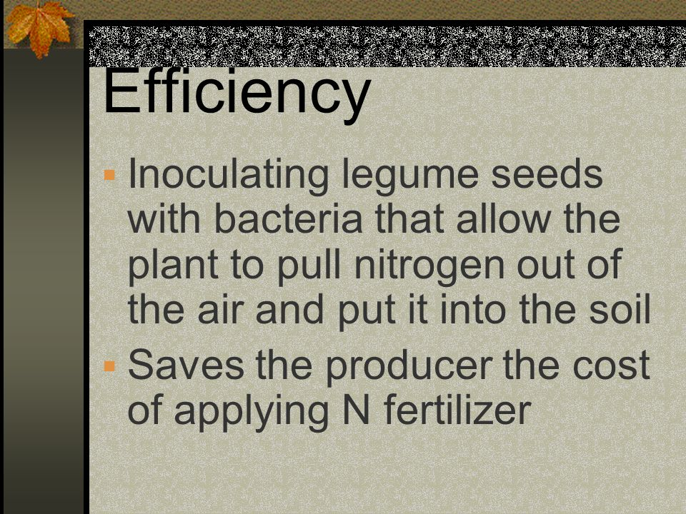 Efficiency Inoculating legume seeds with bacteria that allow the plant to pull nitrogen out of the air and put it into the soil.