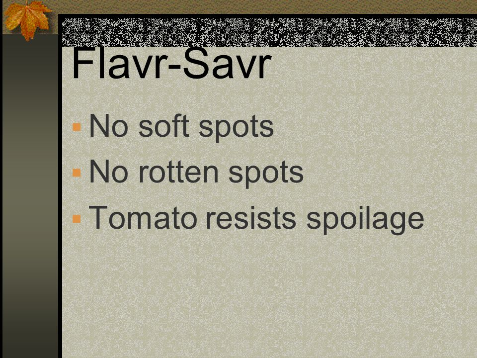 Flavr-Savr No soft spots No rotten spots Tomato resists spoilage