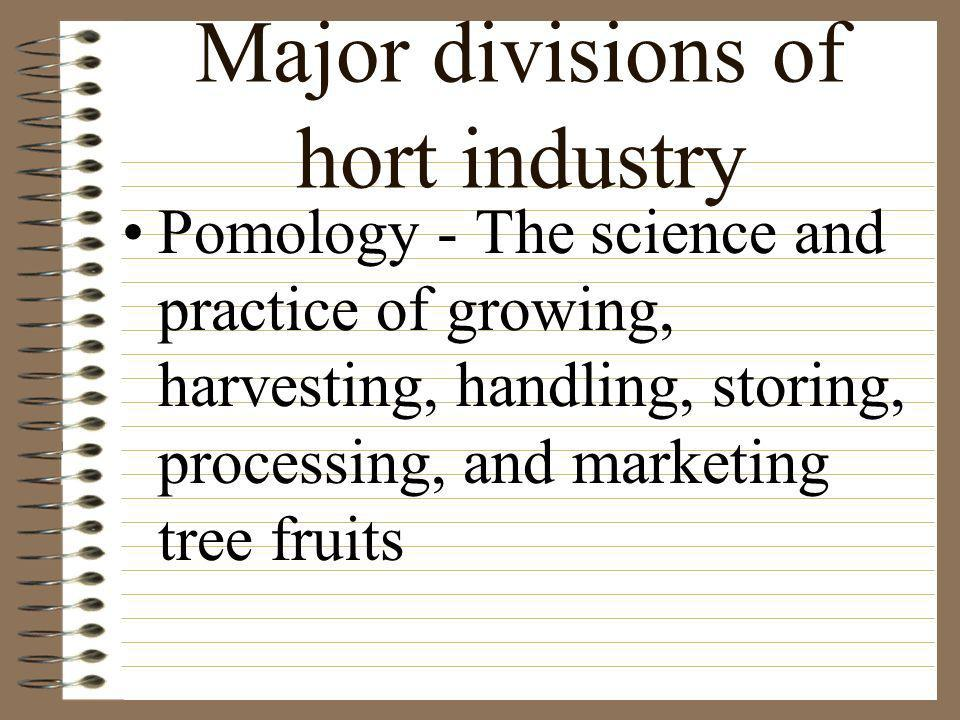 Major divisions of hort industry