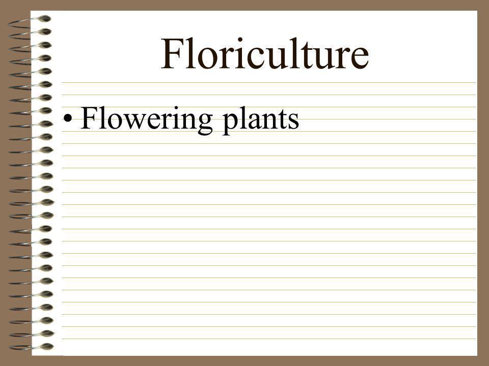 Floriculture Flowering plants