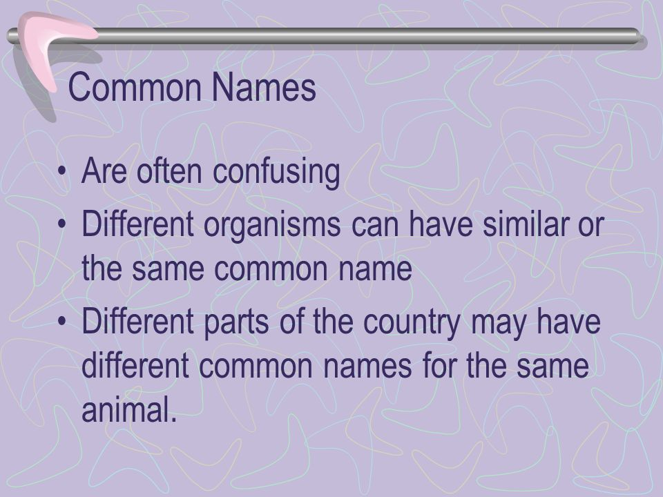 Common Names Are often confusing