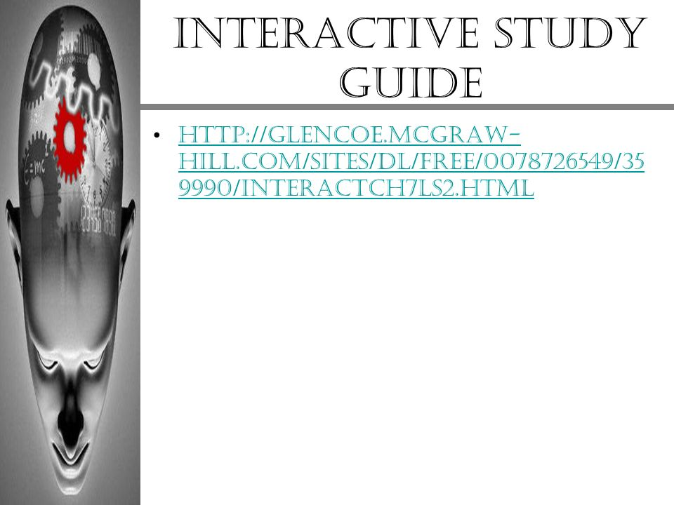 Interactive study guide
