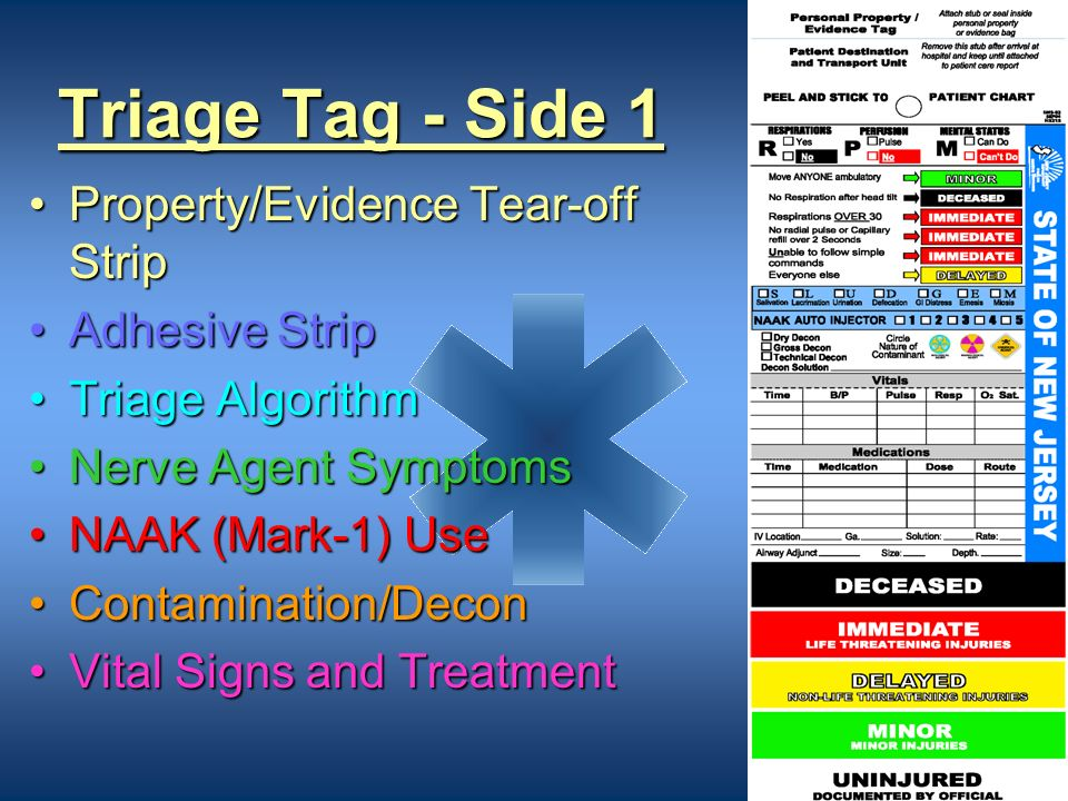 Triage Tag - Side 1 Property/Evidence Tear-off Strip Adhesive Strip