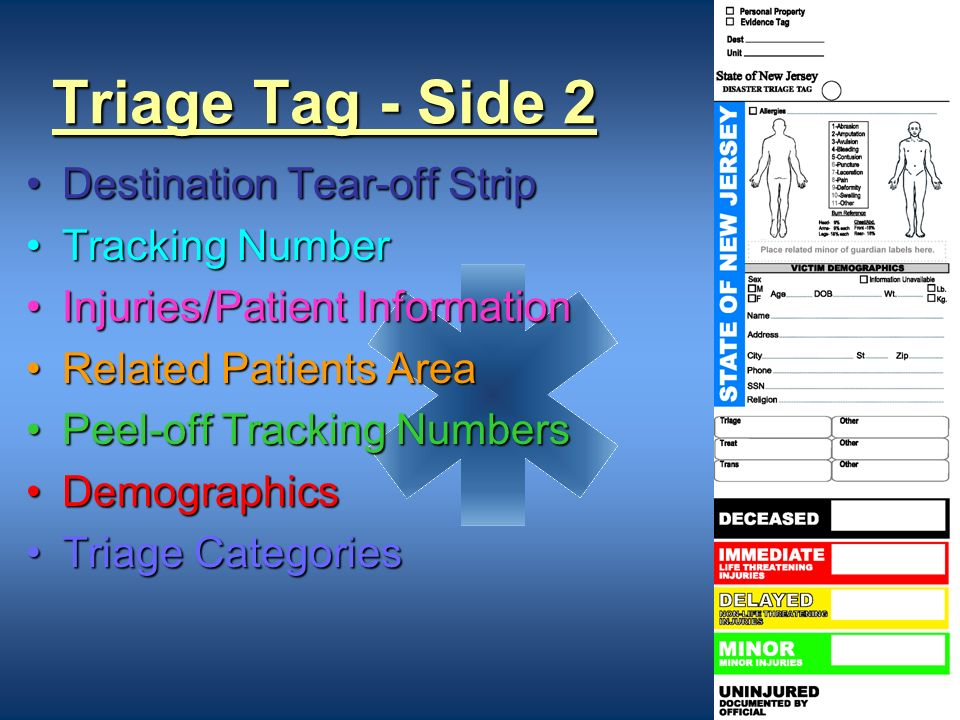 Triage Tag - Side 2 Destination Tear-off Strip Tracking Number
