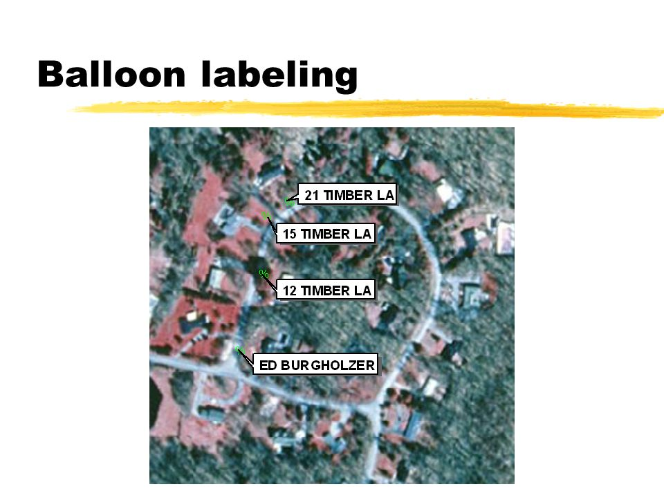 Balloon labeling
