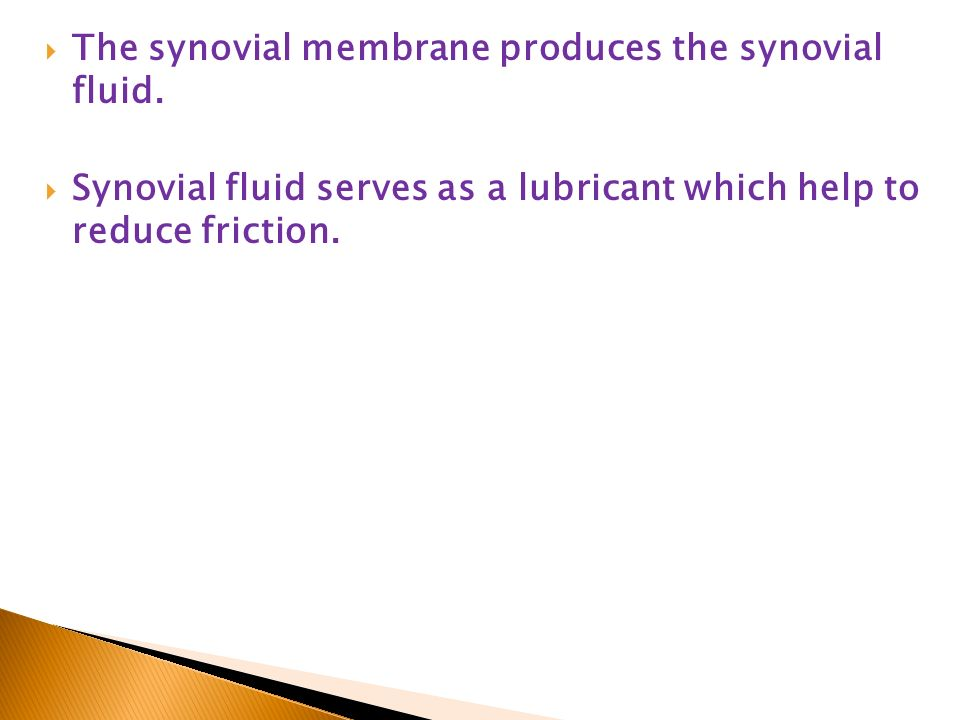 synovial fluid and friction