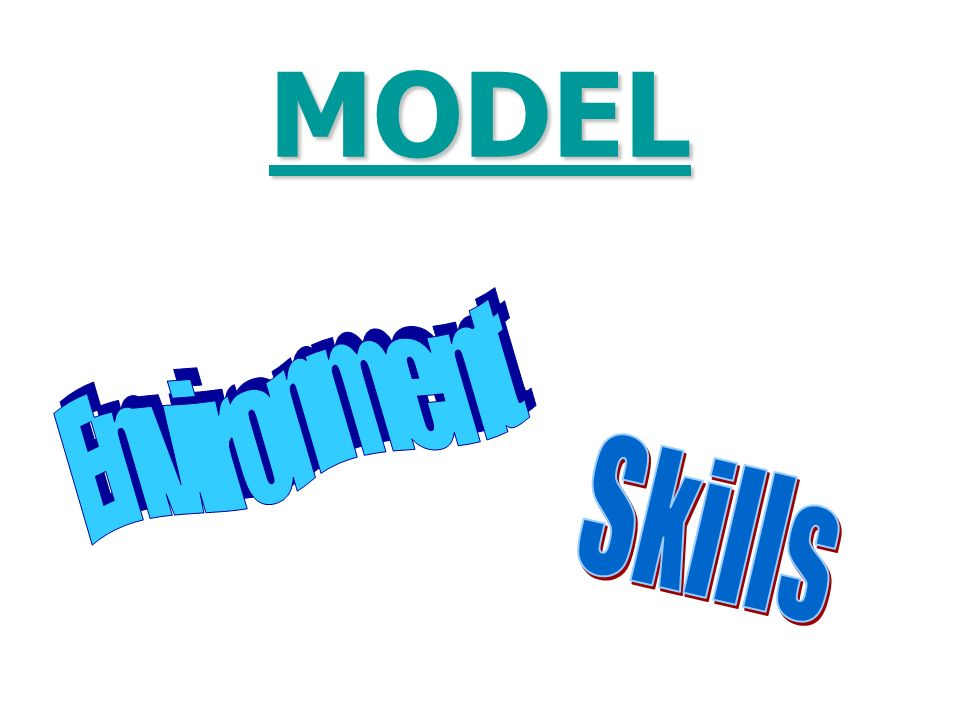 MODEL Environment Skills