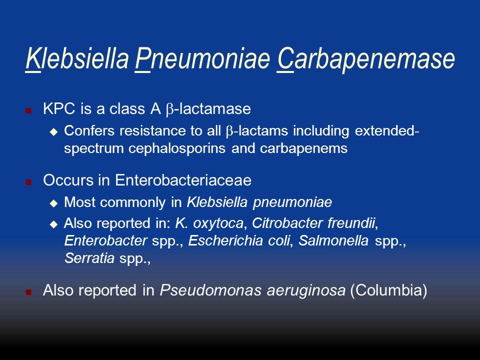 Klebsiella Pneumoniae Carbapenemase