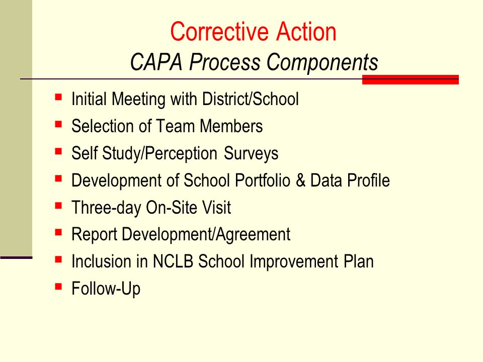 Corrective Action CAPA Process Components