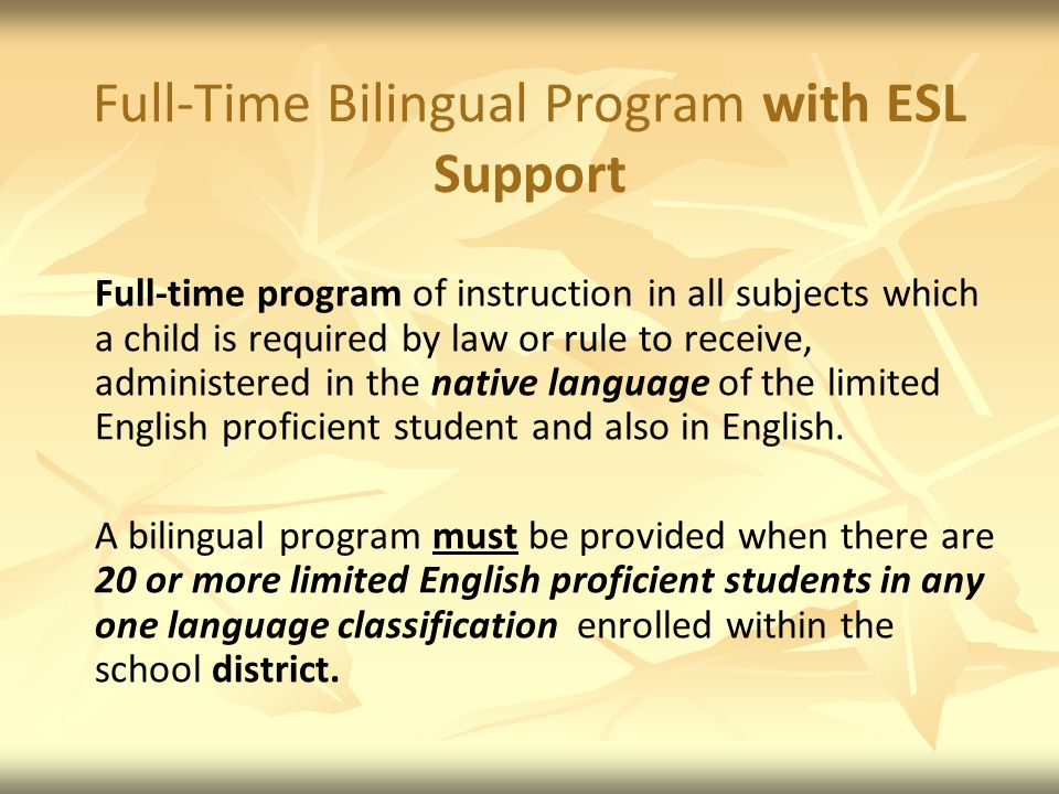 Full-Time Bilingual Program with ESL Support
