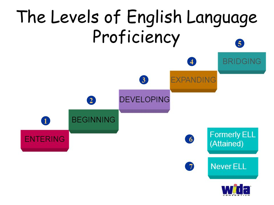 Essay about english proficiency