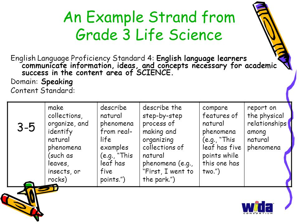 An Example Strand from Grade 3 Life Science