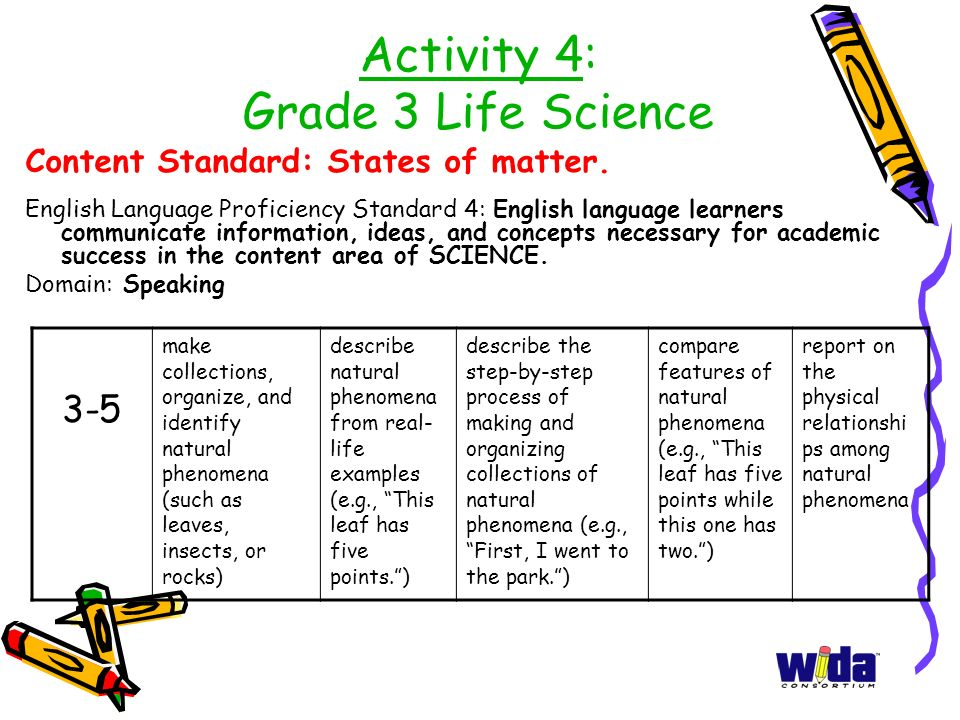Activity 4: Grade 3 Life Science