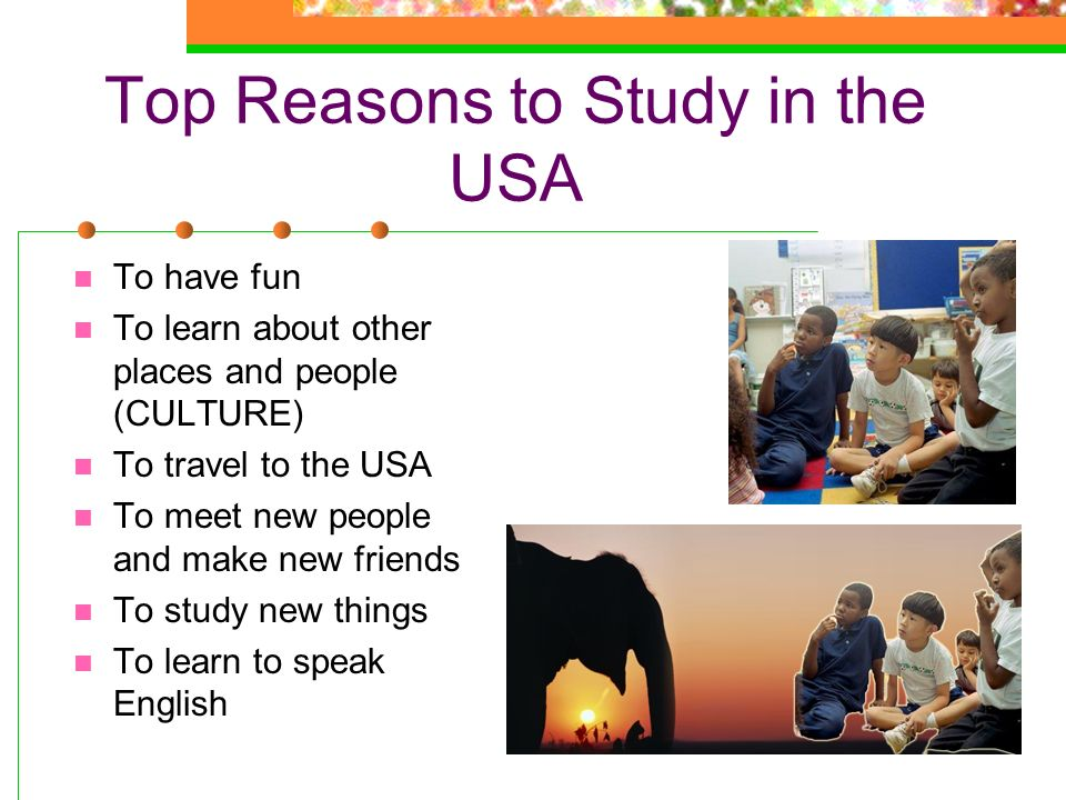 Top Reasons to Study in the USA